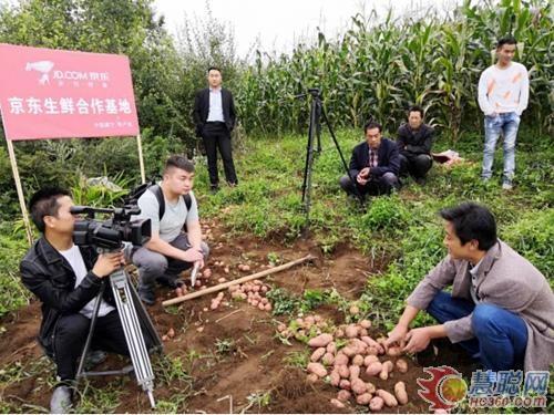 商务部:鼓励电商企业通过直播等带动农产品销售