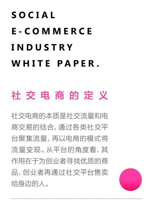 社交电商行业白皮书